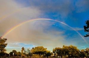 Junie-rainbow