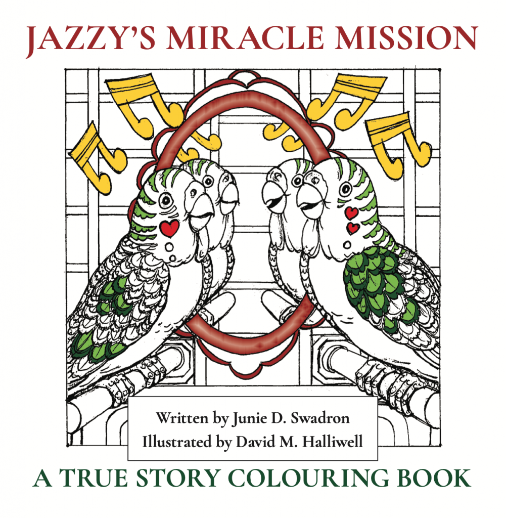 Jazzy's Miracle Mission book
